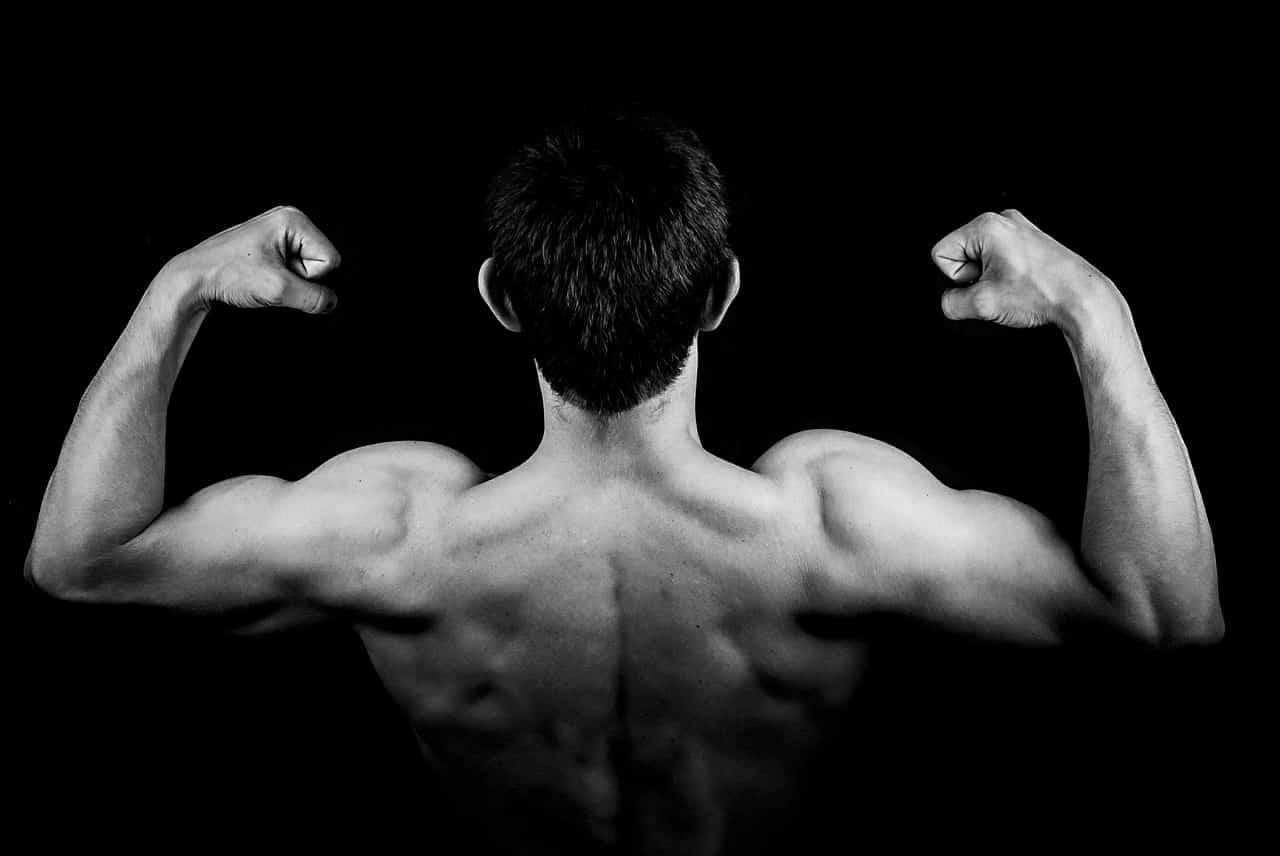 הורמון המין הגברי והשפעותיו על חיי המין